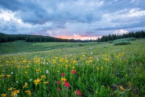 Spring: the secret to improve your well-being